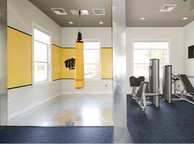 Image of 24 Hour Strength Training Room for The Social at South Florida