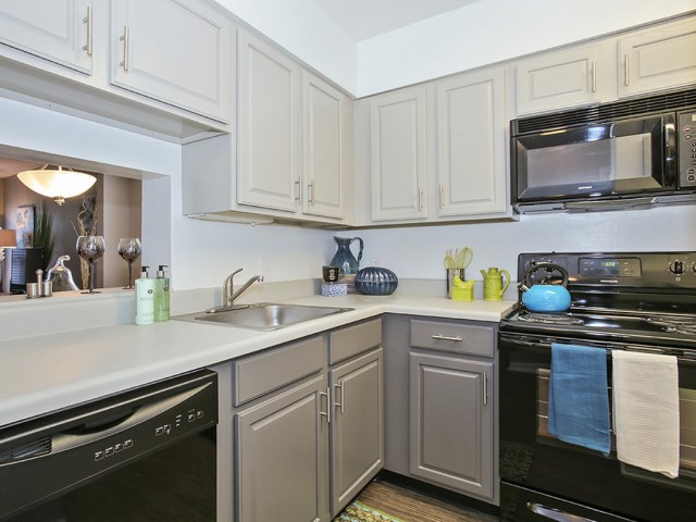 Image of Premium Black Appliance Package in Renovated Homes for The Arlington Apartment Homes