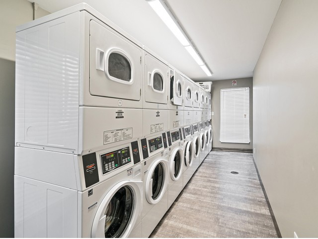 Image of Suds & Studs Fitness & Laundry Facility for The Avalon Apartment Homes