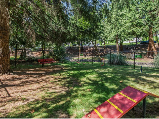 Image of Dog Park for Evergreen Apartment Homes