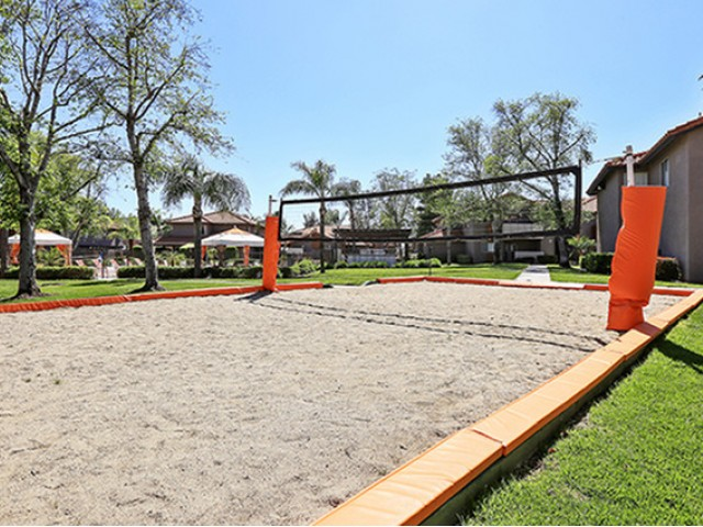 Image of Volleyball Court for The Vue Apartment Homes