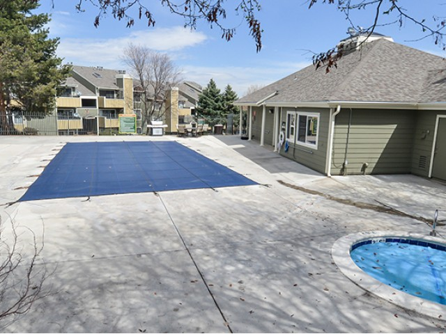 Image of Cool By The Pool for Velo Apartments
