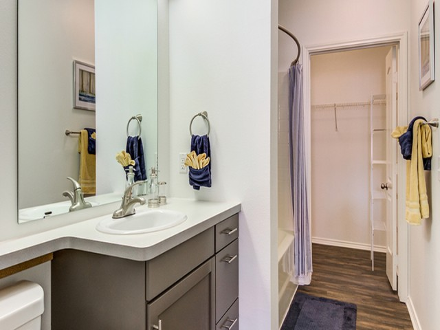 Image of Large Closets for Arrive Watertower Luxury Apartments