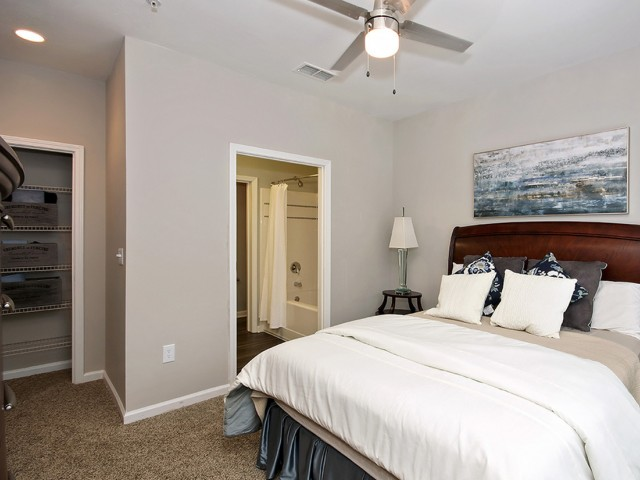Image of Large Closets for The Artisan Luxury Apartment Homes