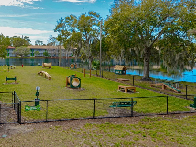 Image of Bark Park with Agility Course for ULake Student Spaces