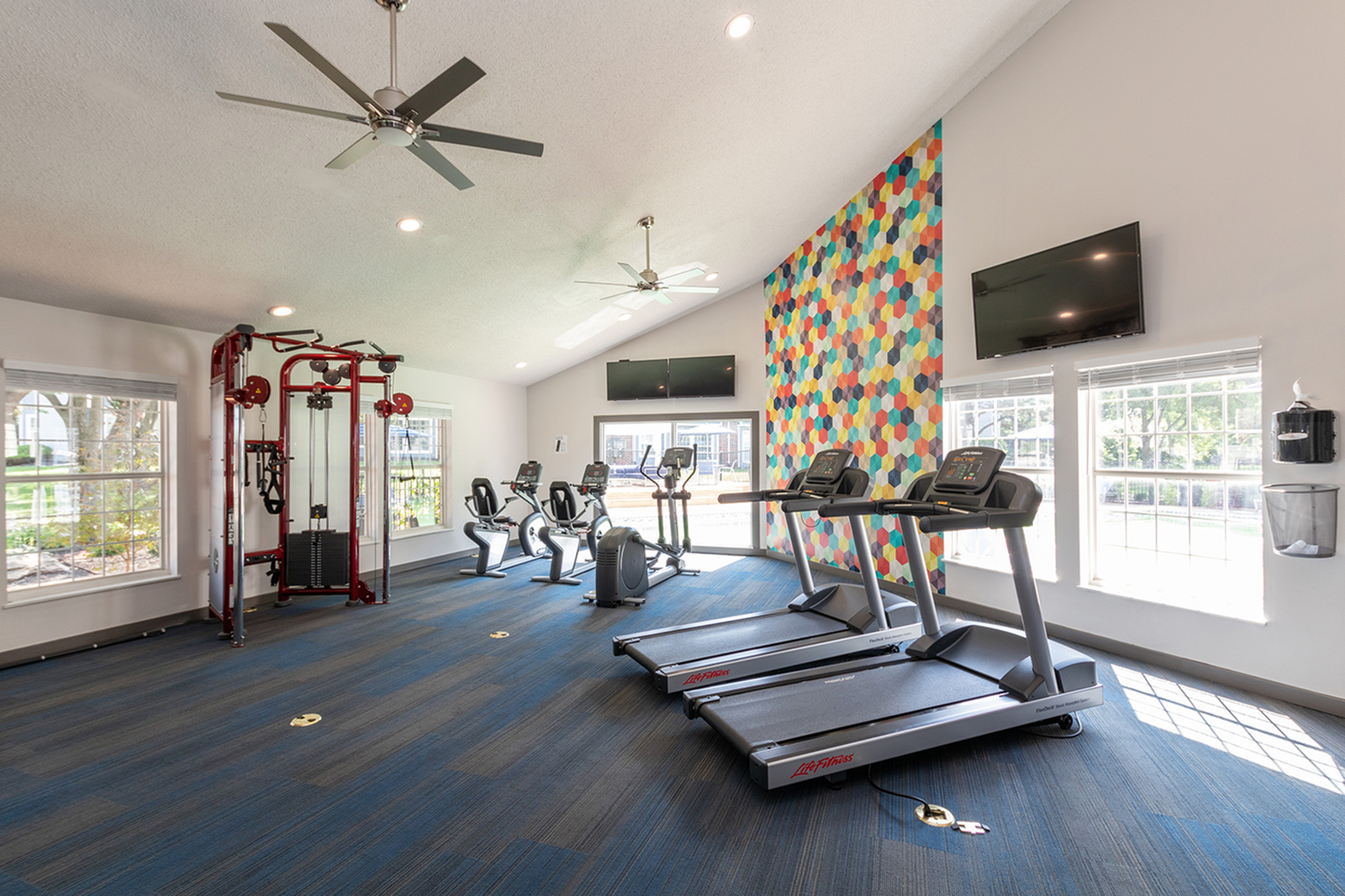 Image of 24 Hour Fitness Studio for ReNew Chesterfield