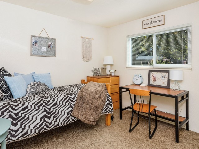 Image of Furnished Options Available for The Social Chico Apartments