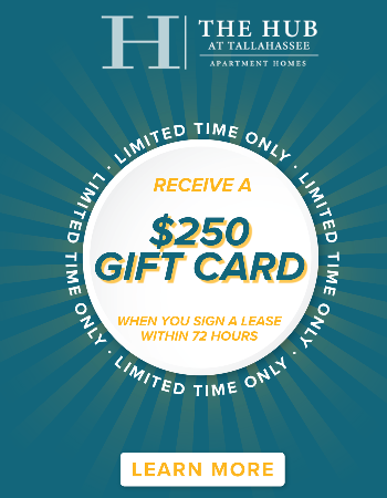 Simply sign a lease within 72 hours & receive a $250 Gift Card at move-in! *New leases only. Contact us for more details!