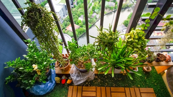 Ideas for Making the Most of Your Patio or Balcony this Summer-image