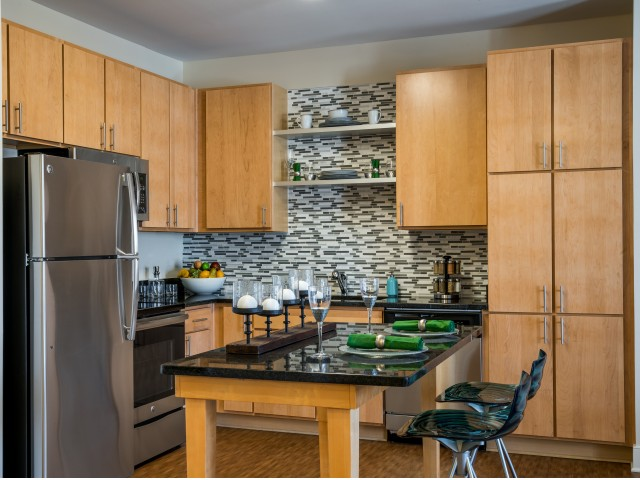 Image of Stainless Steel Kitchen Appliances for Pinnacle Apartments