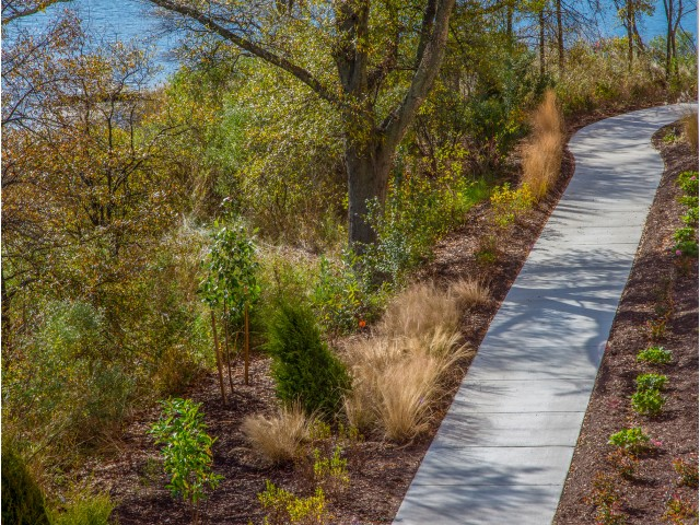 Image of Scenic Walking Path for CovePointe at The Landings