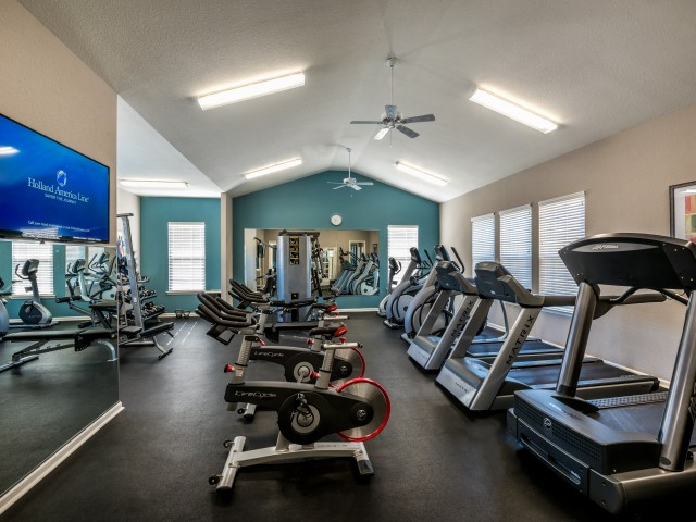 Vigorous Fitness Center | Pinnacle Apartments