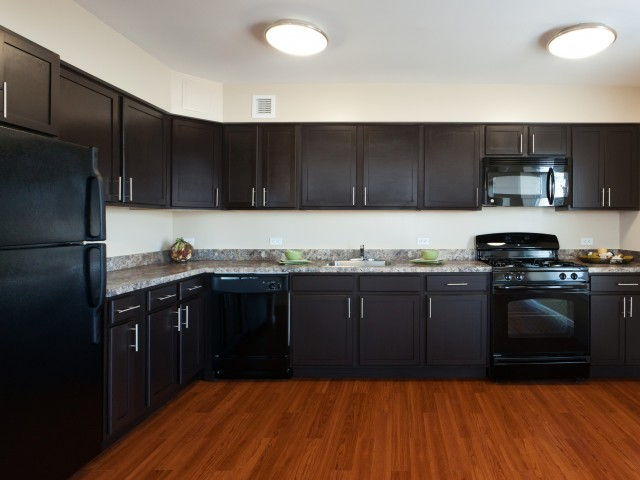 Image of Fully Equipped Kitchens with Black GE Energy Star Appliances and  Granite-Like Countertops for Metro 125