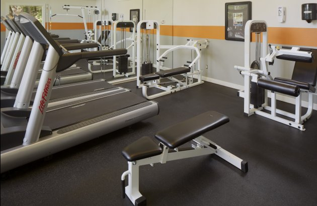 Great Hills' amenities including BBQ areas, spacious dog park, pool, and 24 hr fitness center