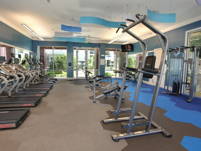 Village at Terra Bella fitness center weight equipment