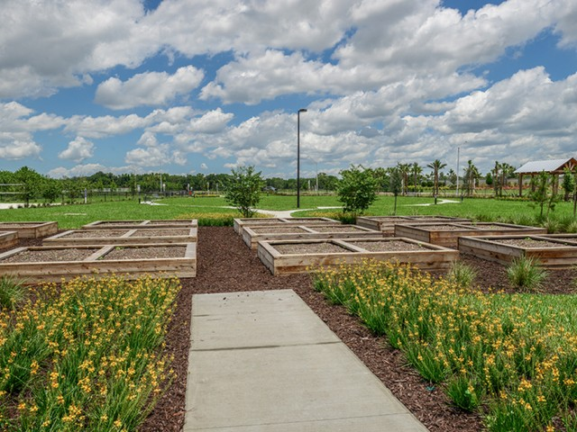 Echo Lake   Lakewood Ranch apartments with community garden