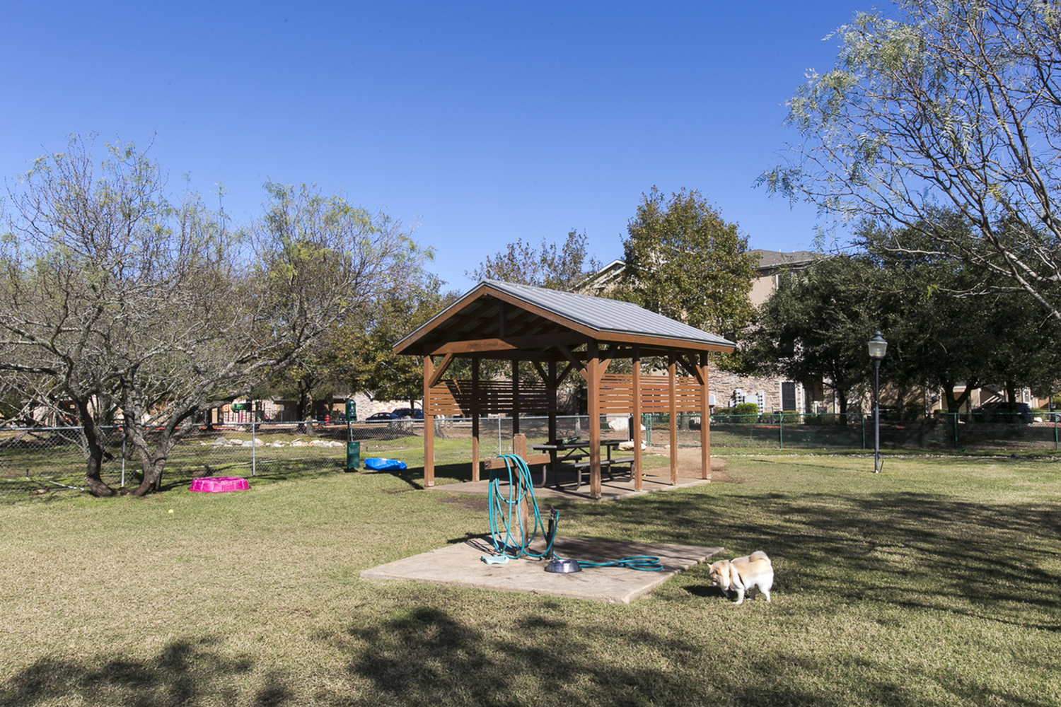 Dog Park | The Park at Monterey Oaks