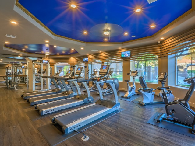 Apartment gym with treadmills, stationary bikes and weight equipment | Altezza apartments