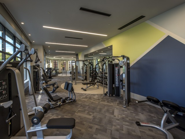 Image of 24 Hour Fitness Gym for The Merc at Moody and Main