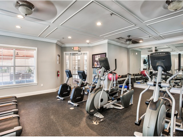 Apartment gym | weight equipment | Yacht Club