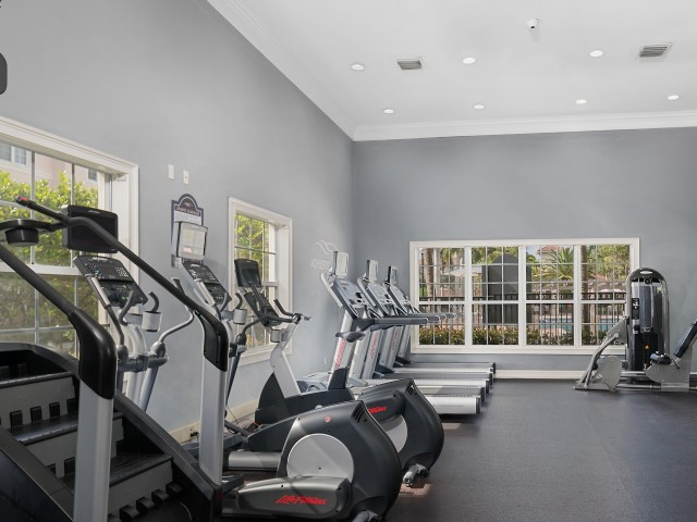 Fitness center in Floresta