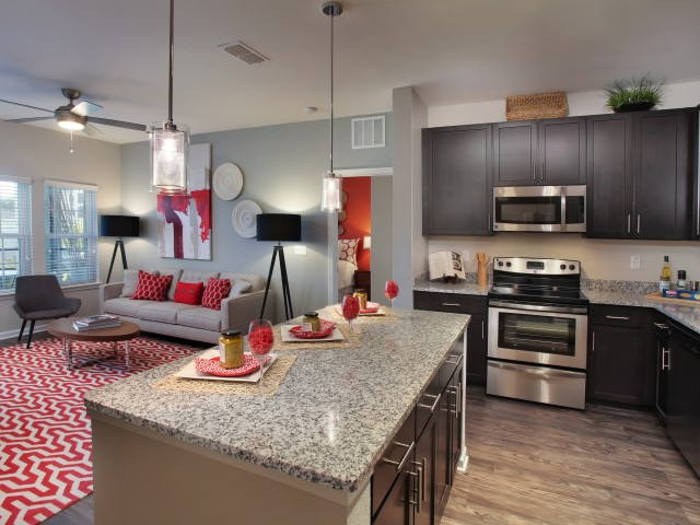 Apartment interior with open kitchen and living room | Village at Terra Bella rentals