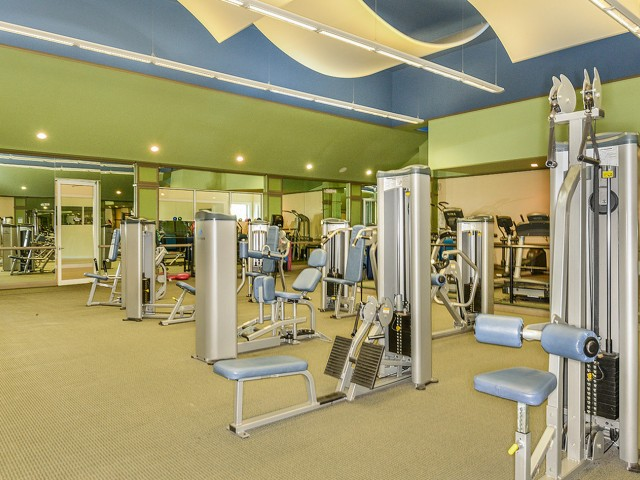 Apartment gym | Weight and cardio equipment