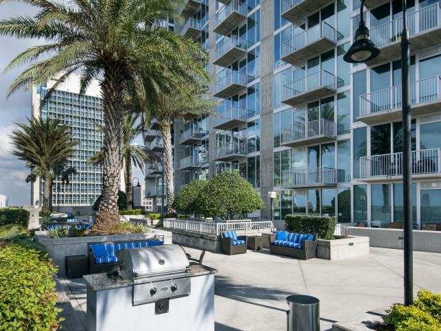 Pet friendly apartments in downtown Tampa   Element