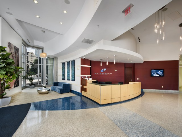 1 bedroom apartments in downtown Tampa   Element