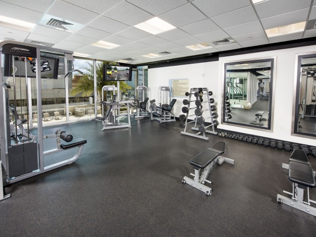 Luxury Tampa apartments with gym   Element