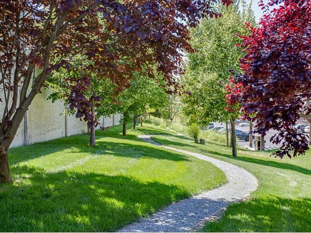 Image of Running Trail for https://university-gateway.com