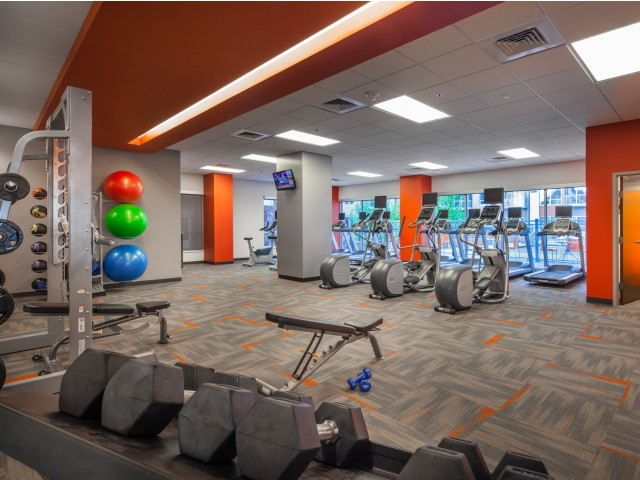 Image of 24 Hour Fitness Gym for Domain