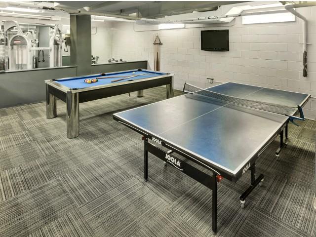 Arabella 101, interior, game room, billiard table, tennis table, tv