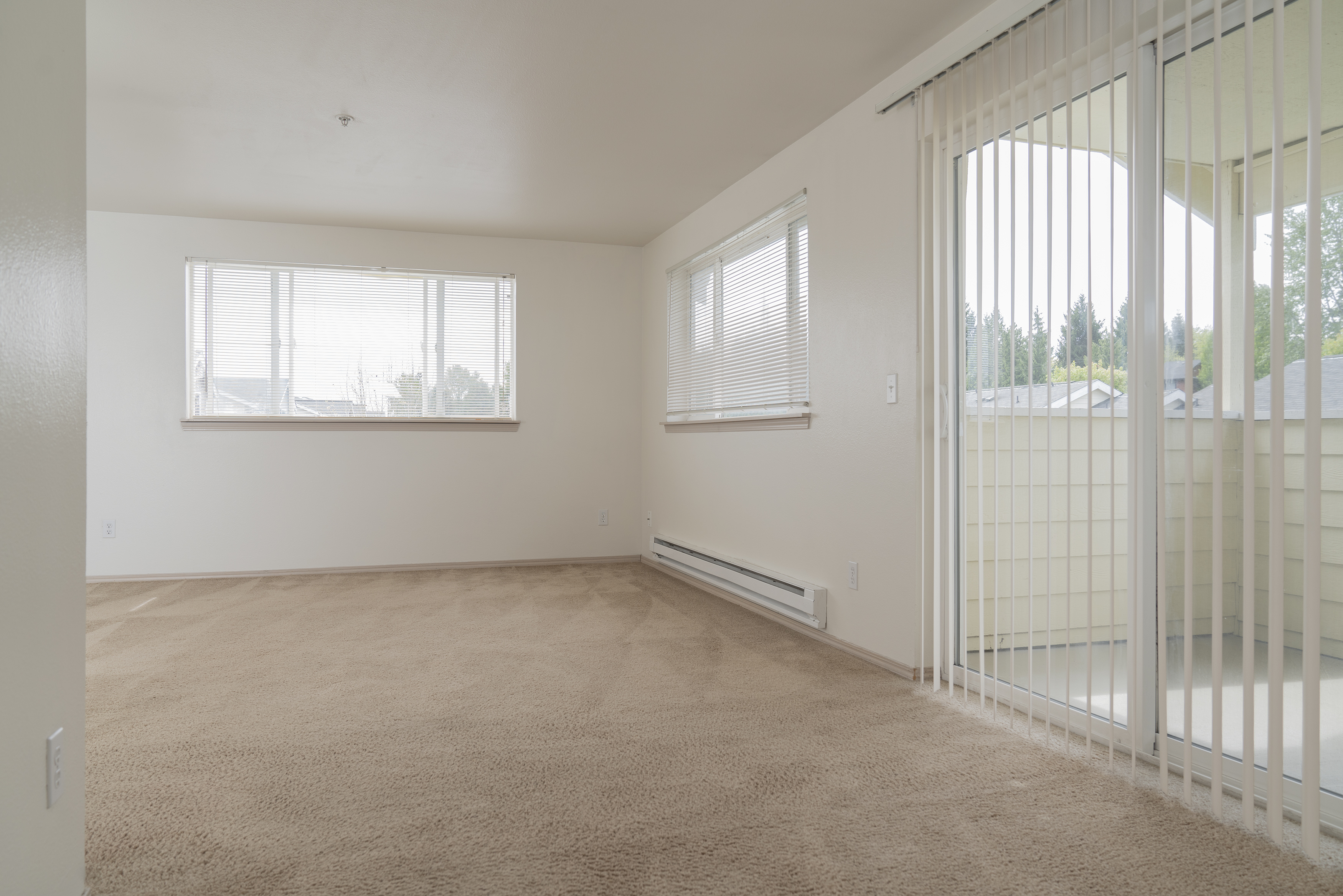 Image of Carpet for Fircrest Gardens Apartments