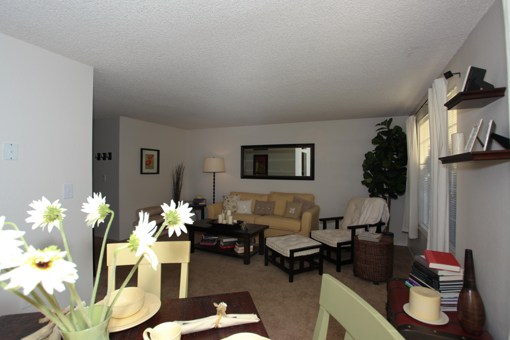 Cozy Livingrooms | Puyallup WA Apartments For Rent | Willow Hill