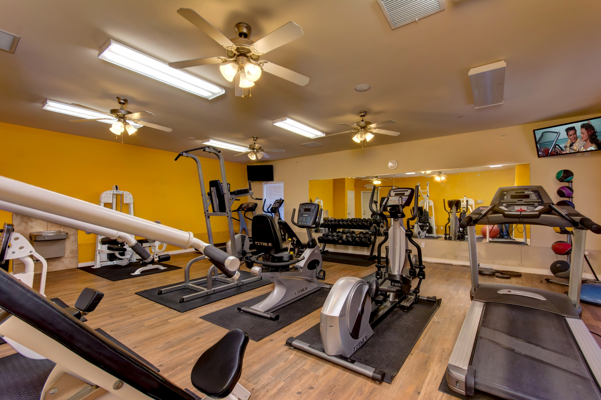 Palm Village - TLC Properties - Apartments Springfield, MO - Fitness - Fitness Center - Gym