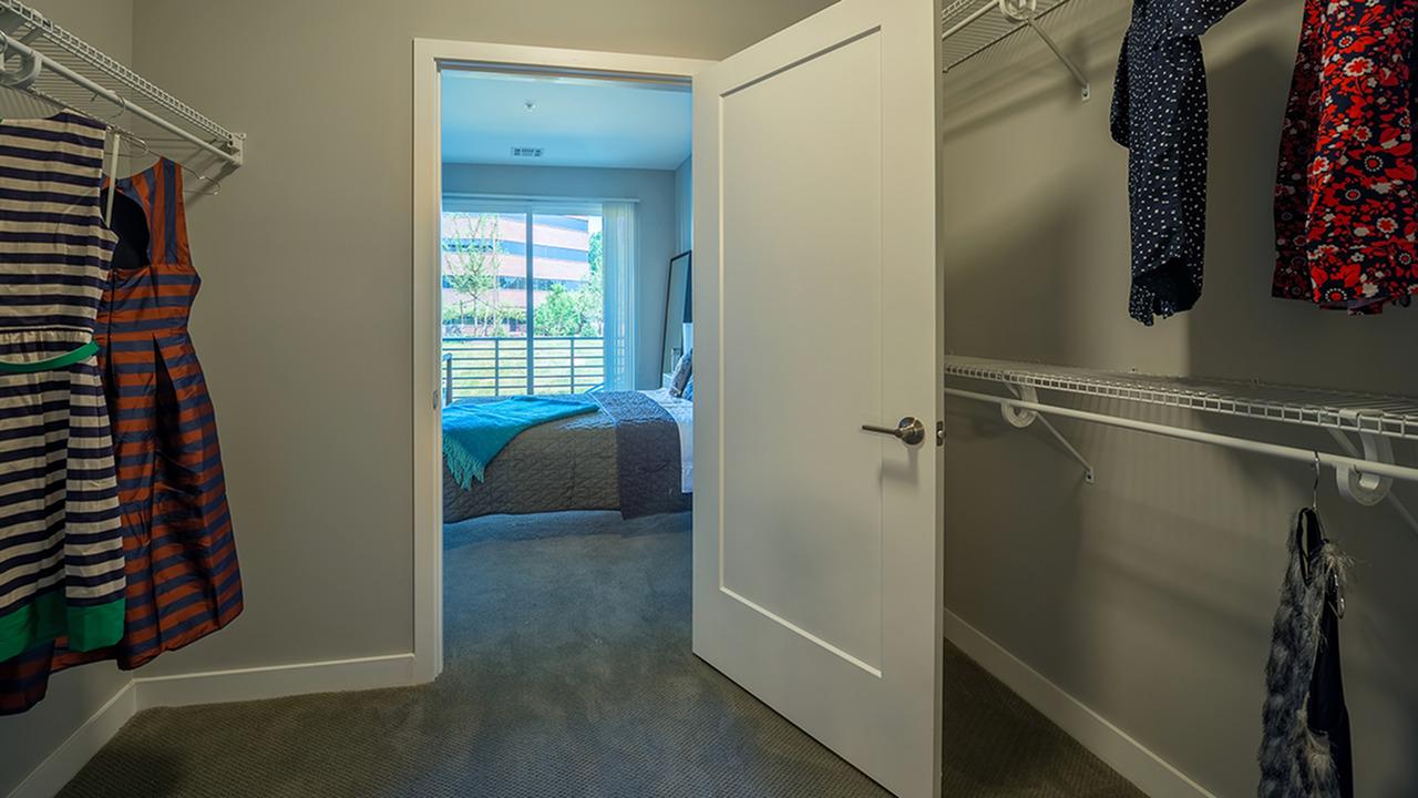 Walk-In Closets in Bedrooms