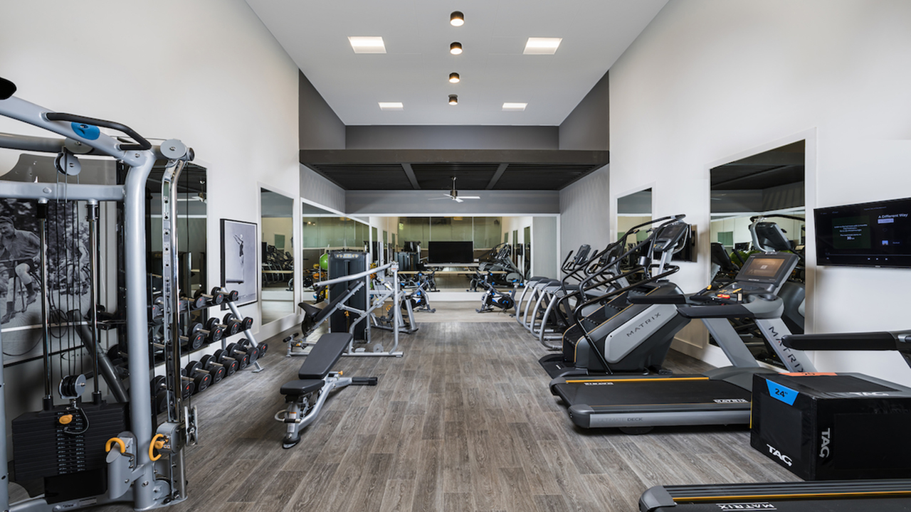 Newly Redesigned Fitness Center with cardio equipment, free weights and machines