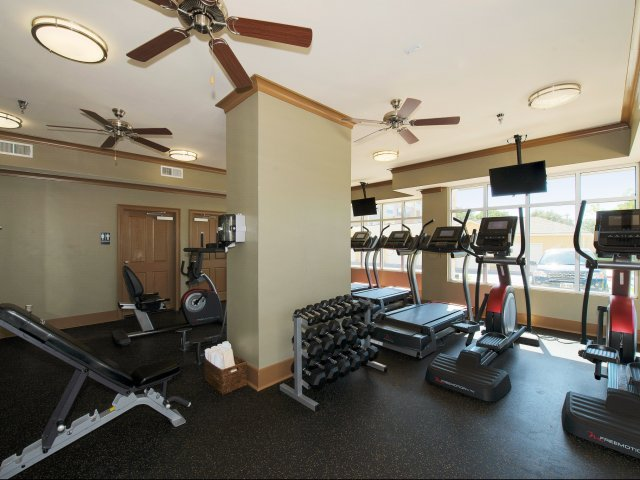 State of the Art Fitness Center | Health and Fitness | Siena on Sonterra Apts
