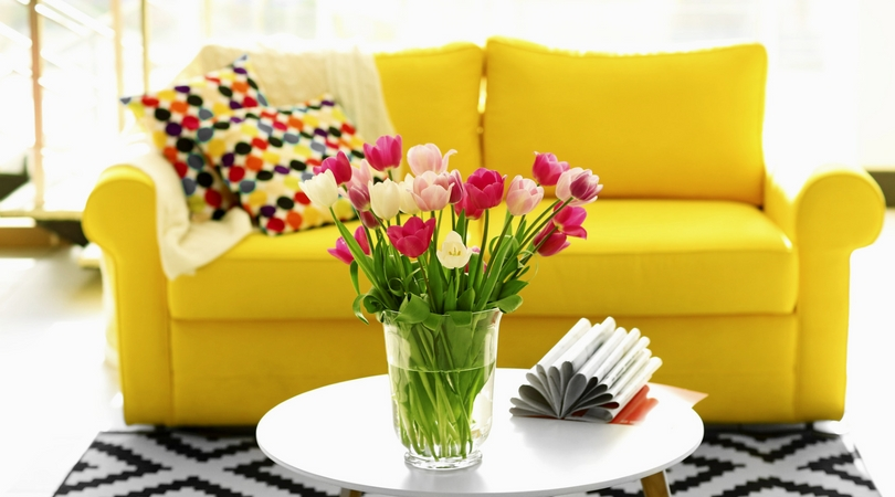 Adding Color to Your Cricket Hollow Apartment-image
