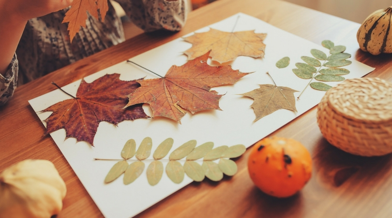 DIY Thanksgiving Crafts-image