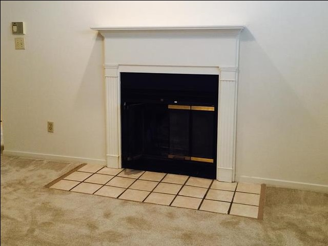 Image of Woodburning Fireplace for Spring Lake Point