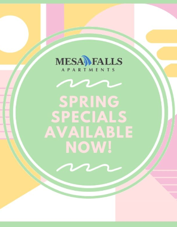 Click to Check Out Our Spring Specials!