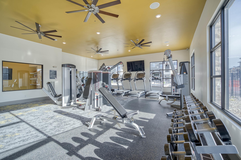A Gym Designed For You!-image