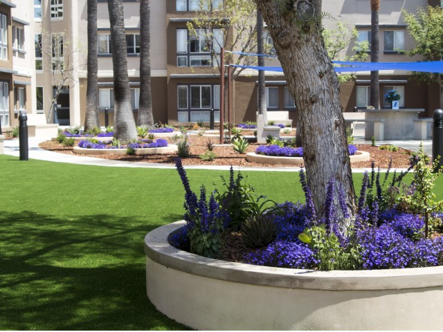 View of updated resident courtyard with planter boxes with blue flowers, large trees, paved walkways and the covered meeting spaces.