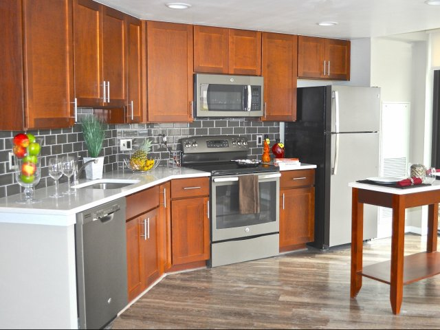 Image of Electric GE Slate Appliances for Virginia Square Towers