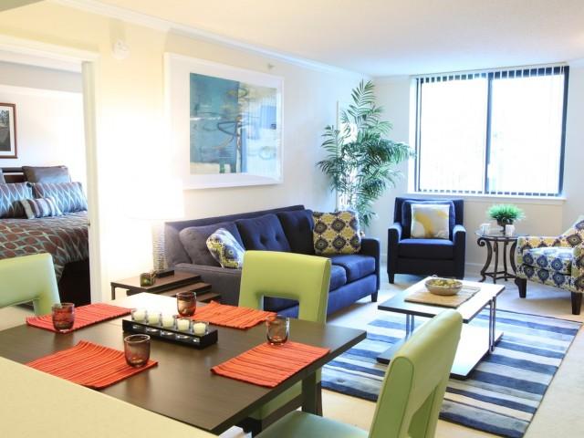 Apartments In Arlington VA Birchwood Interesting One Bedroom Apartments In Arlington Va Set Collection