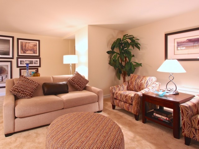 Luxurious Living Room | Arlington VA Apartments | Columbia Park