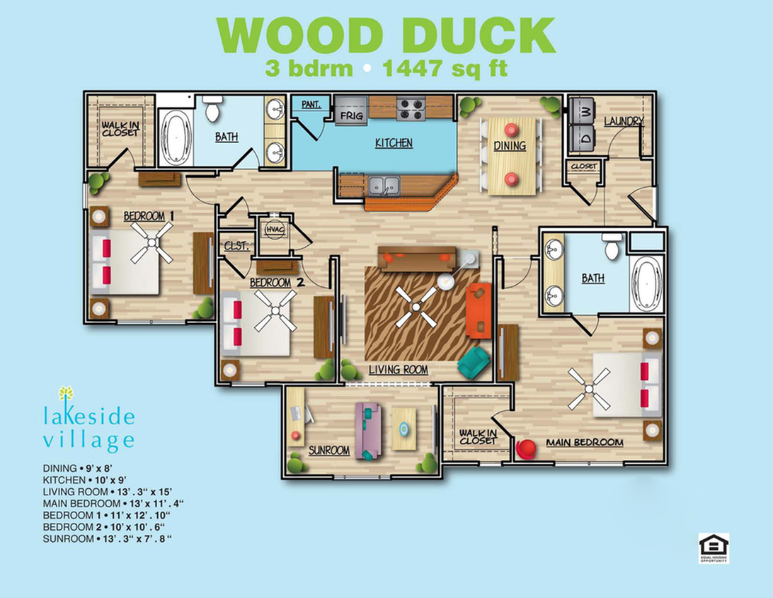Wood Duck B